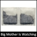 Big Mother Is Watching Icon