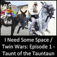 I Need Some Space (The Final Frontier) OR Twin Wars: Episode 1 - Taunt of the Tauntaun