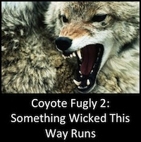 Coyote Fugly: Part 2 - Something Wicked This Way Runs