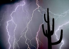 Arizona Lightning