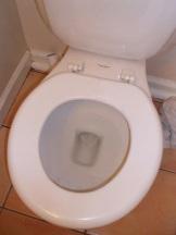 The Toilet (Where the Magic Happens)