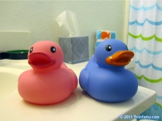 His and Hers Rubber Duckies