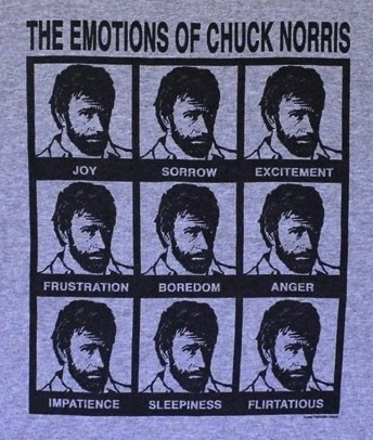"My ""The Emotions of Chuck Norris"" Shirt - Click to buy this majestic garment for your very own."
