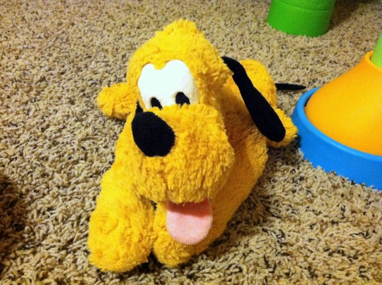 My son's stuffed Pluto
