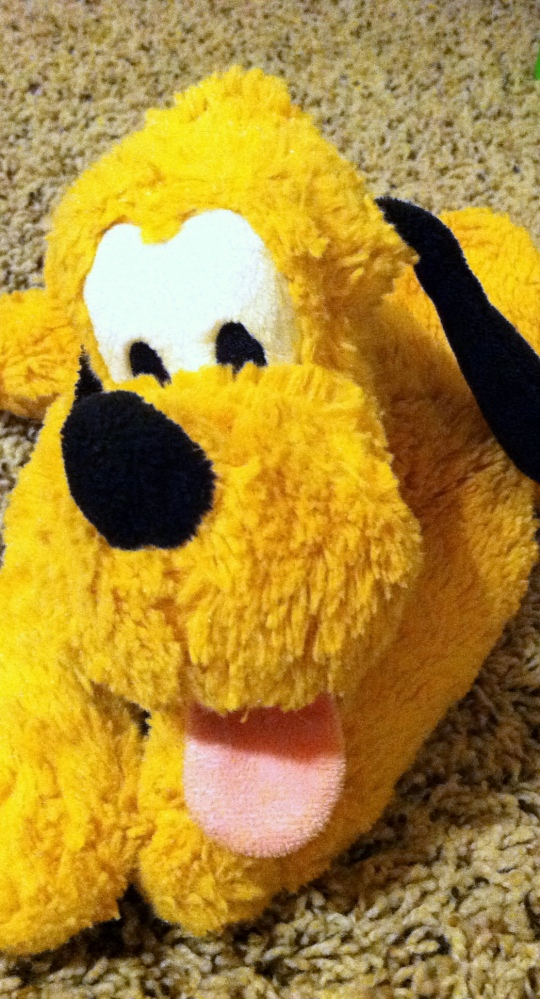 My son's stuffed Pluto