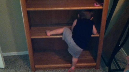 ToddlerParkour