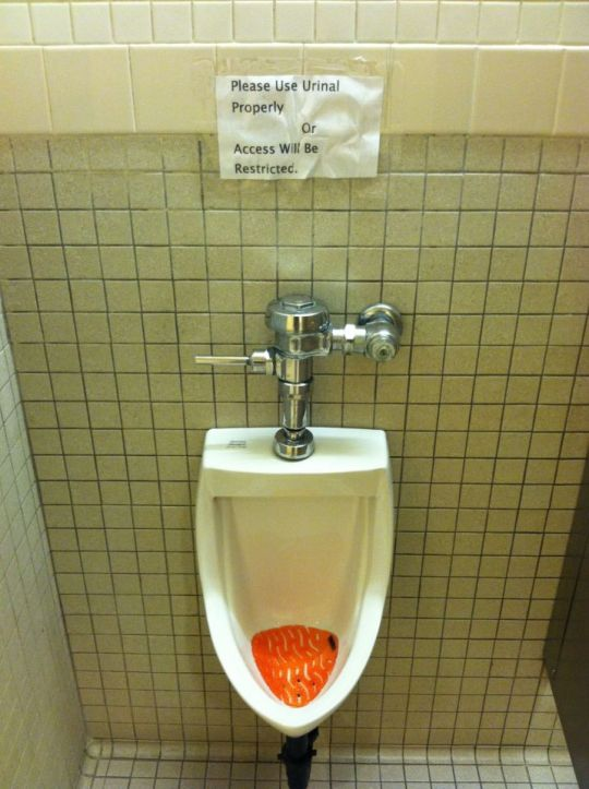 """Please Use Urinal Properly, or Access Will Be Restricted"""